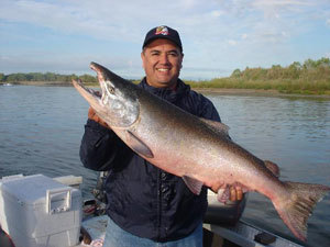Feather river king salmon