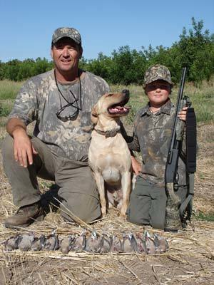 Northern California  dove hunts